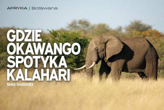 Gdzie Okawango spotyka Kalahari