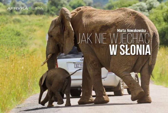 Jak nie wjechać w słonia