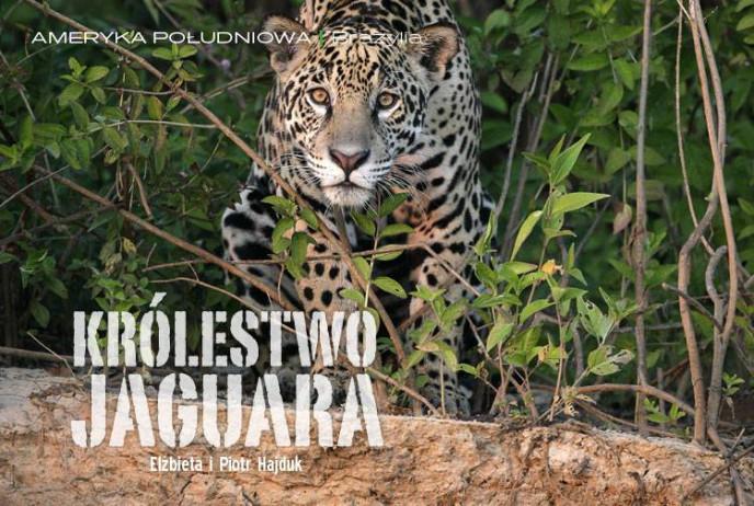 Królestwo jaguara