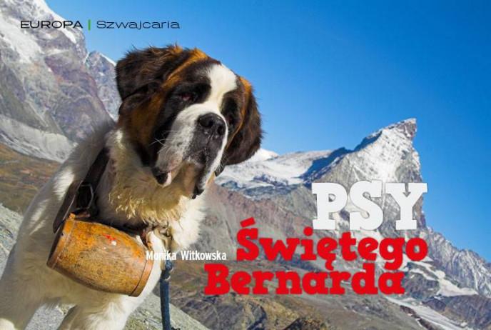 Psy Świętego Bernarda