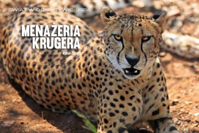 Menażeria Krugera