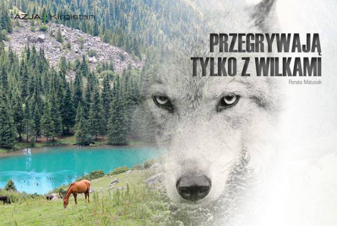 Przegrywają tylko z wilkami
