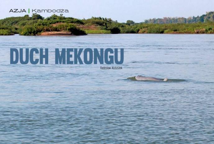 Duch Mekongu