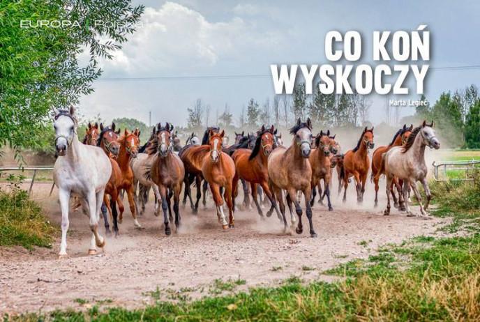 Co koń wyskoczy