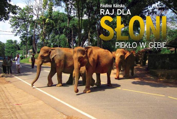 Raj dla słoni, piekło w gębie