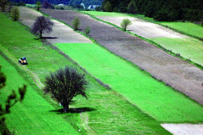 Oranie pola po zimie  - Roztocze, Polska