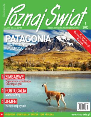 Okładka numeru 01.2013