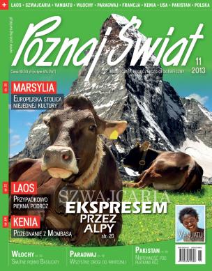 Okładka numeru 11.2013