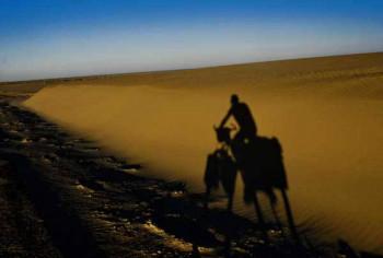 Desert & Mountain Challenge